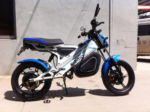 electric scooter SY-DL_blue&white (6)