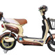 Electric Scooter SY-BDXED