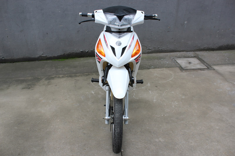 electric scooter red eagle 2016, electric scooter SY-DHY_white (1)