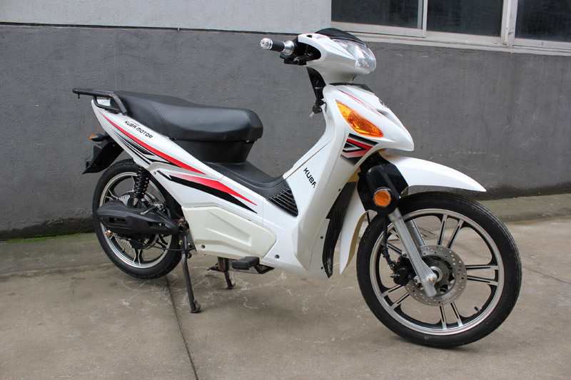 electric scooter red eagle 2016, electric scooter SY-DHY_white (3)