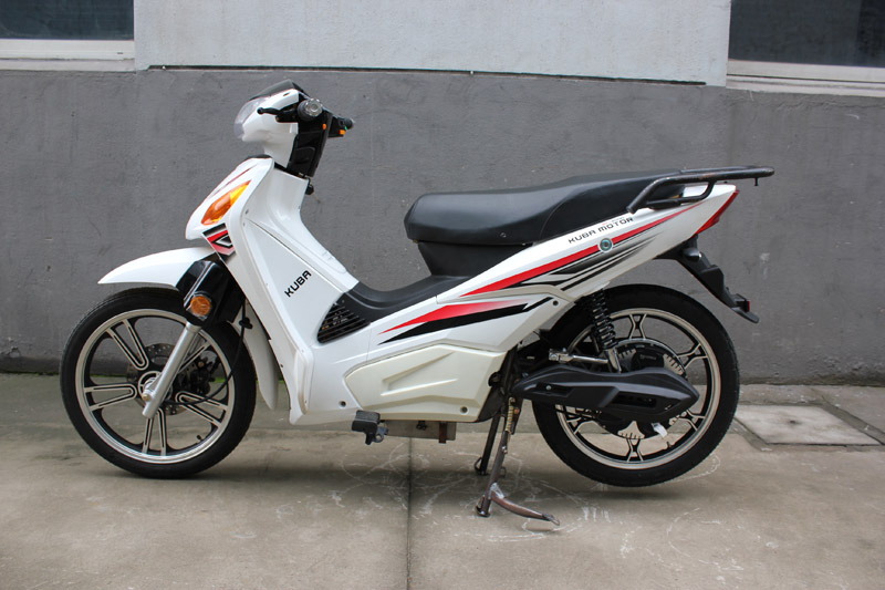electric scooter red eagle 2016, electric scooter SY-DHY_white (8)
