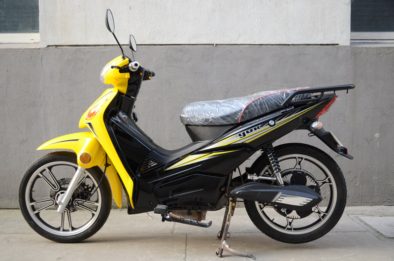 SY-DHY_yellow&black (1)