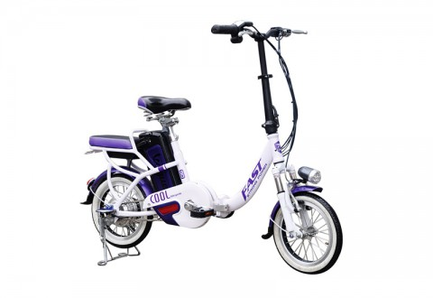 electric bike SY-FMZD2