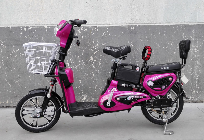 electric bike King Molly, electric bike SY-JML_purple&black (1)