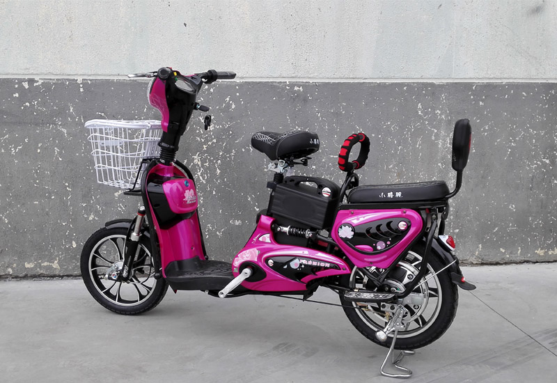 electric bike King Molly, electric bike SY-JML_purple&black (2)
