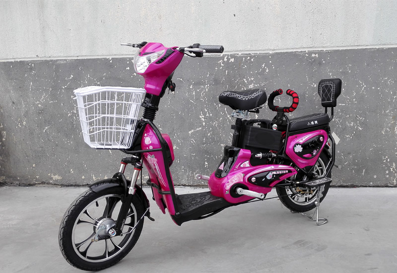 electric bike King Molly, electric bike SY-JML_purple&black (3)