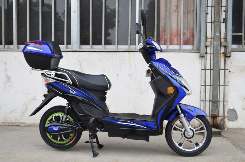 SY-XLY_blue&black(1)