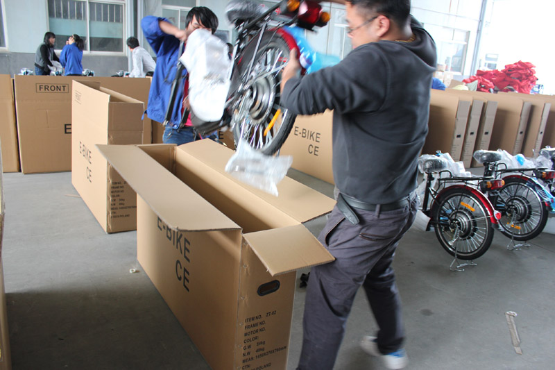 SUNWING_SHENYUN_electric bike_container loading_SKD pack_6