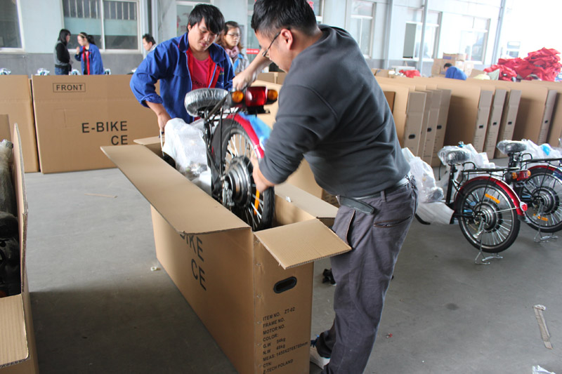 SUNWING_SHENYUN_electric bike_container loading_SKD pack_7