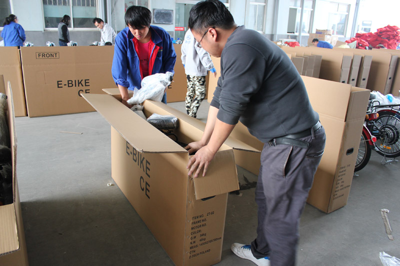 SUNWING_SHENYUN_electric bike_container loading_SKD pack_8