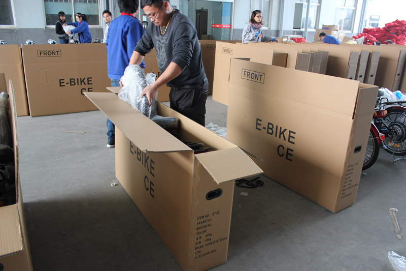 SUNWING_SHENYUN_electric bike_container loading_SKD pack_9