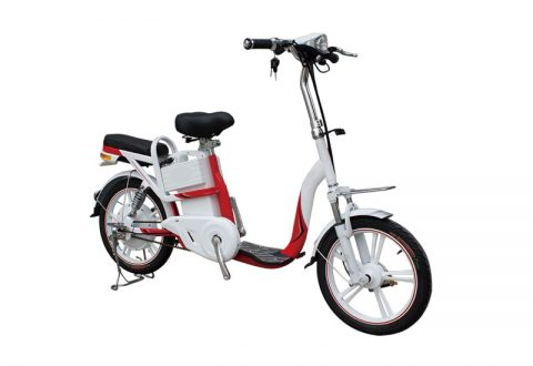 SY-SYYH Electric Bike