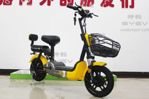SY-ZD_Yellow-Black3