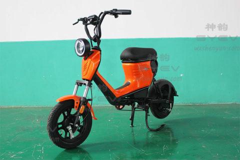 SY-WL_Orange2